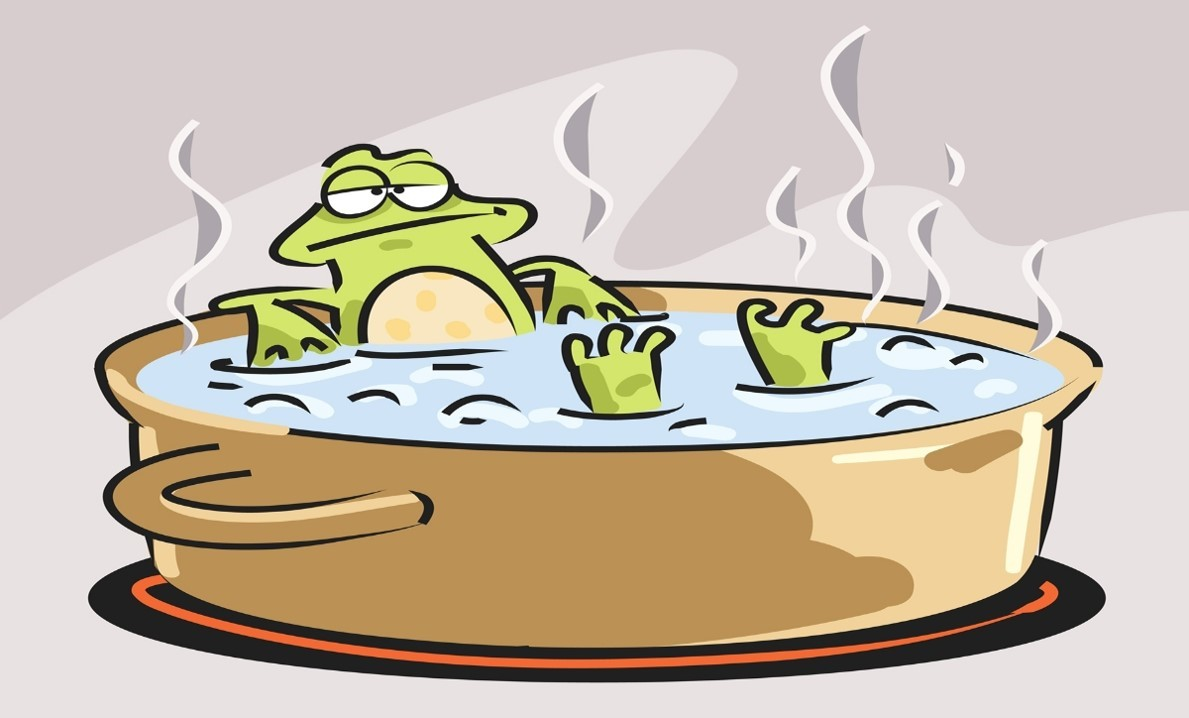 The Boiling FrogAnalogy